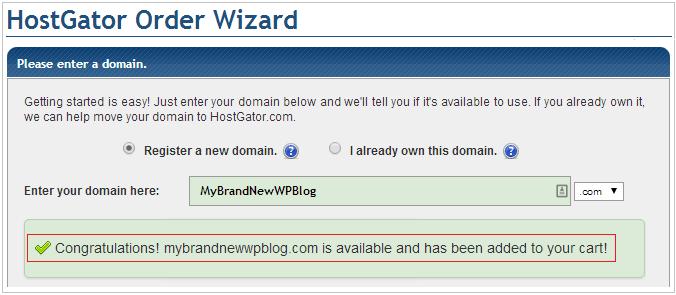 domain-success1